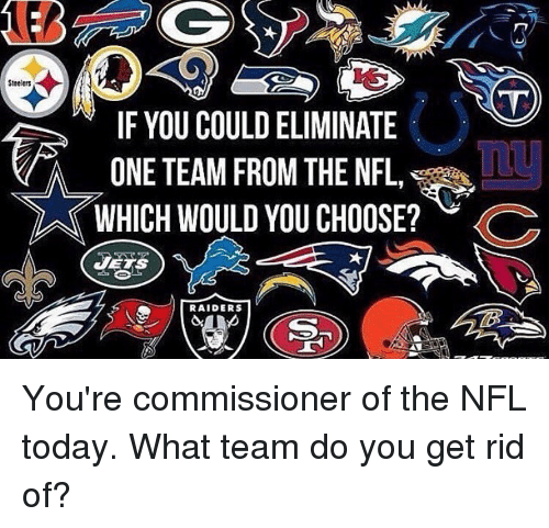 Memes, Steelers, and 🤖: Steelers  IF YOU COULDELIMINATE  ONE TEAM FROM THE NFL  WHICH WOULD YOU CHOOSE?  C  RAIDERS You're commissioner of the NFL today. What team do you get rid of?