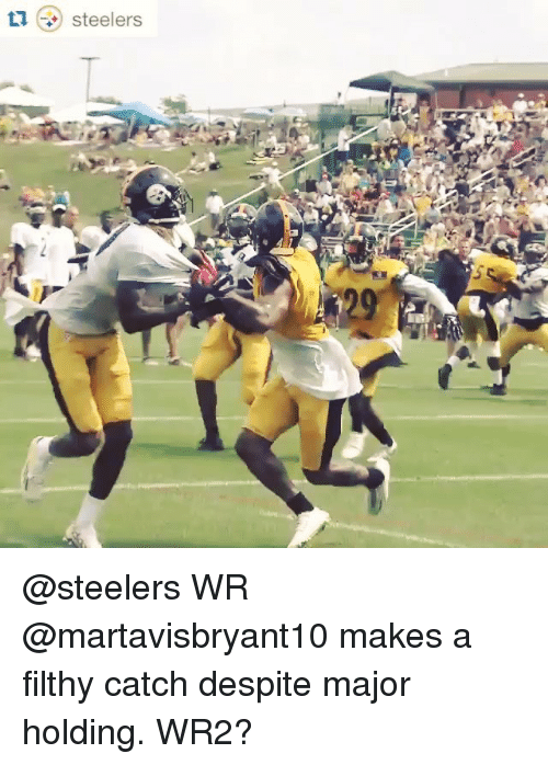Steelers: steelers @steelers WR @martavisbryant10 makes a filthy catch despite major holding. WR2?