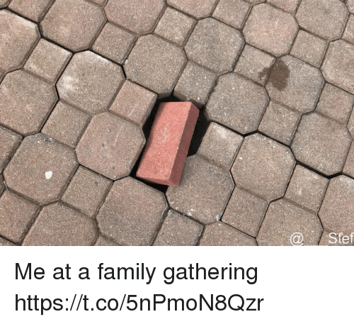 Family, Funny, and Awkward: @Stef Me at a family gathering https://t.co/5nPmoN8Qzr
