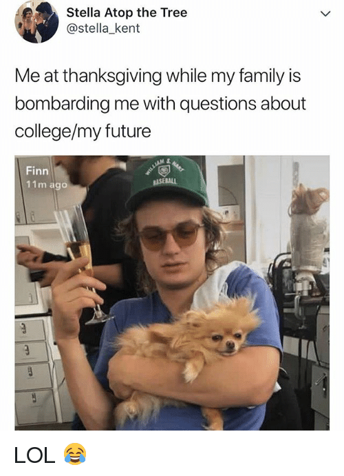College, Family, and Finn: Stella Atop the Tree  @stella_kent  Me at thanksgiving while my family is  bombarding me with questions about  college/my future  Finn  11m ago LOL 😂
