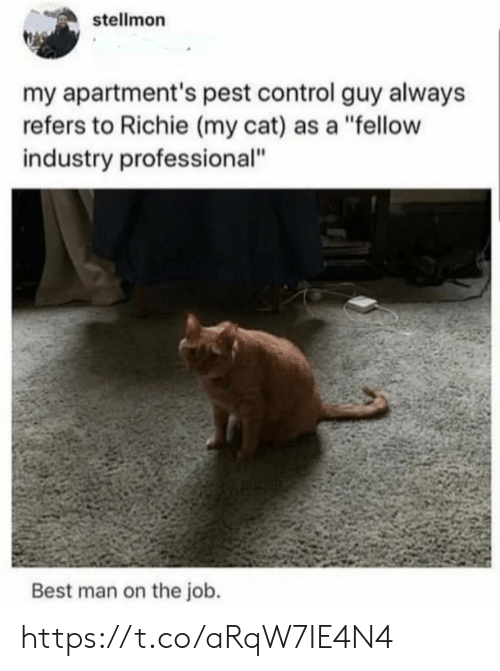 "pest: stellmon  my apartment's pest control guy always  refers to Richie (my cat) as a ""fellow  industry professional""  Best man on the job. https://t.co/aRqW7IE4N4"