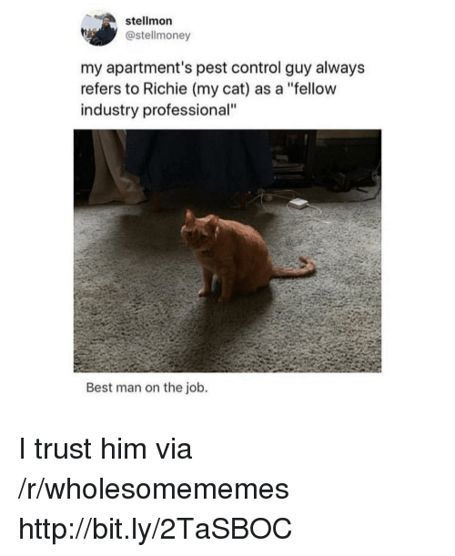 "pest: stellmon  @stellmoney  my apartment's pest control guy alway:s  refers to Richie (my cat) as a ""fellow  industry professional""  Best man on the job. I trust him via /r/wholesomememes http://bit.ly/2TaSBOC"