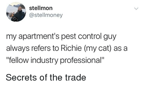 "pest: stellmon  @stellmoney  my apartment's pest control guy  always refers to Richie (my cat) as a  ""fellow industry professional"" Secrets of the trade"