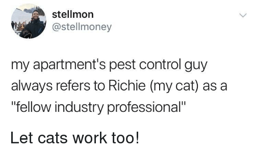 "pest: stellmon  @stellmoney  my apartment's pest control guy  always refers to Richie (my cat) as a  ""fellow industry professional"" Let cats work too!"
