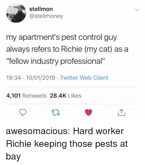 "pest: stellmor  @stellmoney  my apartment's pest control guy  always refers to Richie (my cat) as a  fellow industry professional""  19:34 10/01/2019 Twitter Web Client  4,101 Retweets 28.4K Likes awesomacious:  Hard worker Richie keeping those pests at bay"