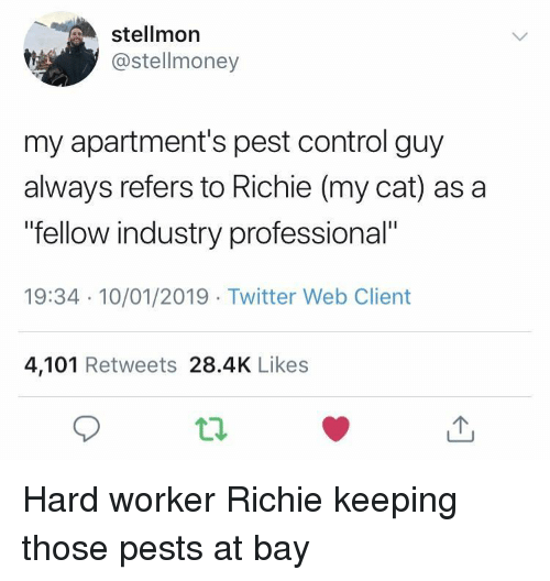 "pest: stellmor  @stellmoney  my apartment's pest control guy  always refers to Richie (my cat) as a  fellow industry professional""  19:34 10/01/2019 Twitter Web Client  4,101 Retweets 28.4K Likes Hard worker Richie keeping those pests at bay"