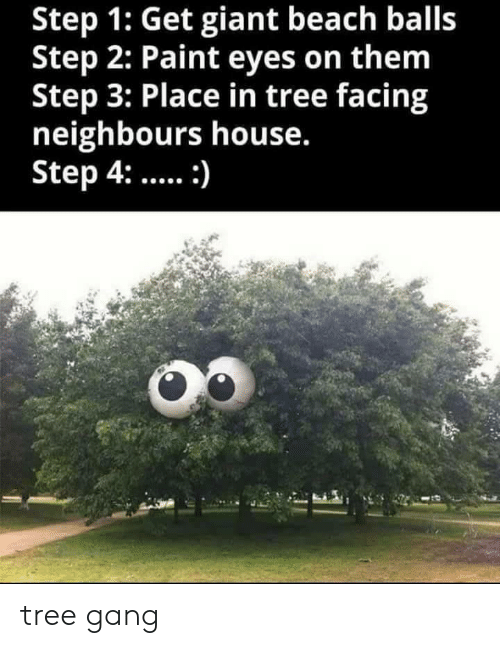 Step 1: Step 1: Get giant beach balls  Step 2: Paint eyes on them  Step 3: Place in tree facing  neighbours house.  Step 4:: tree gang