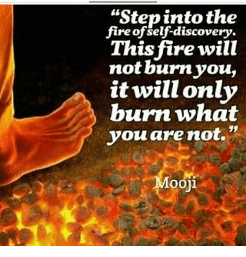 "Memes, 🤖, and Discovery: ""Step into the  fire of self-discovery.  This fire will  not burn you,  it will only  burn what  you are not.  Mooji"