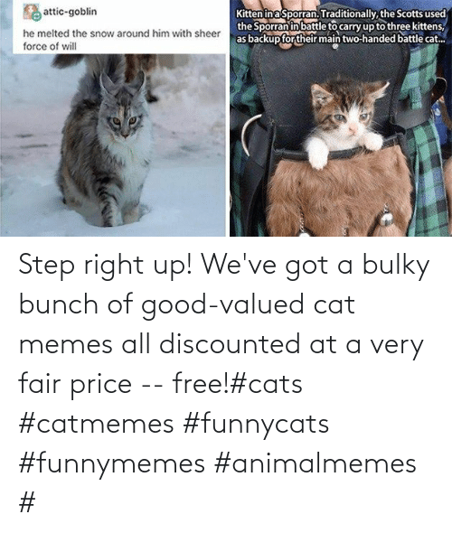 funnymemes: Step right up! We've got a bulky bunch of good-valued cat memes all discounted at a very fair price -- free!#cats #catmemes #funnycats #funnymemes #animalmemes #