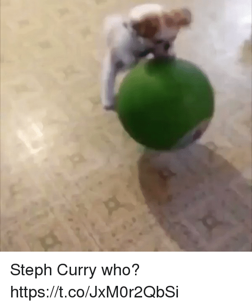 Steph Curry, Relatable, and Curry: Steph Curry who? https://t.co/JxM0r2QbSi