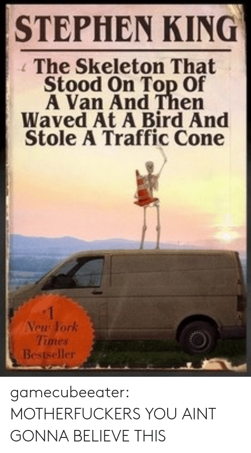 Stephen King: STEPHEN KING  The Skeleton That  Stood On Top Of  A Van And Then  Waved At A Bird And  Stole A Traffic Cone  Vew York  Times  er gamecubeeater:  MOTHERFUCKERS YOU AINT GONNA BELIEVE THIS