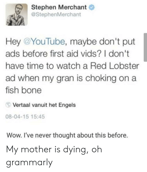 Grammarly: Stephen Merchant  @StephenMerchant  Hey @YouTube, maybe don't put  ads before first aid vids? I don't  have time to watch a Red Lobster  ad when my gran is choking on a  fish bone  Vertaal vanuit het Engels  08-04-15 15:45  Wow. I've never thought about this before. My mother is dying, oh grammarly