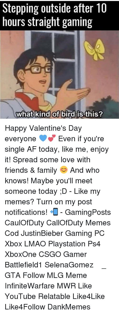 What Kind Of Bird Is This: Stepping outside after 10  hours straight gaming  what kind of  bird is this? Happy Valentine's Day everyone 💙💕 Even if you're single AF today, like me, enjoy it! Spread some love with friends & family 😊 And who knows! Maybe you'll meet someone today ;D - Like my memes? Turn on my post notifications! 📲 - GamingPosts CaulOfDuty CallOfDuty Memes Cod JustinBieber Gaming PC Xbox LMAO Playstation Ps4 XboxOne CSGO Gamer Battlefield1 SelenaGomez بوس_ستيشن GTA Follow MLG Meme InfiniteWarfare MWR Like YouTube Relatable Like4Like Like4Follow DankMemes