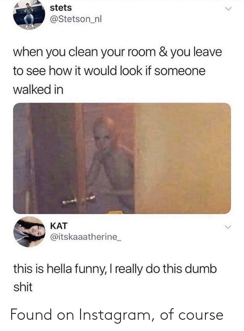 Hella Funny: stets  @Stetson_nl  when you clean your room & you leave  to see how it would look if someone  walked in  KAT  @itskaaatherine_  this is hella funny, I really do this dumb  shit Found on Instagram, of course