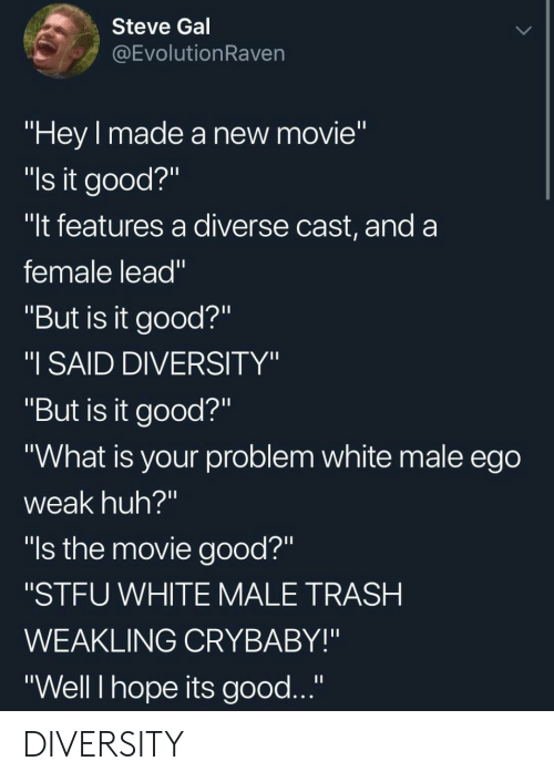 """Diversity: Steve Gal  @EvolutionRaven  """"Hey made a new movie""""  """"ls it good?""""  """"It features a diverse cast, and a  female lead""""  """"But is it good?""""  """"I SAID DIVERSITY""""  """"But is it good?""""  """"What is your problem white male ego  weak huh?""""  """"ls the movie good?""""  """"STFU WHITE MALE TRASH  WEAKLING CRYBABY!""""  """"Well I hope its good..."""" DIVERSITY"""