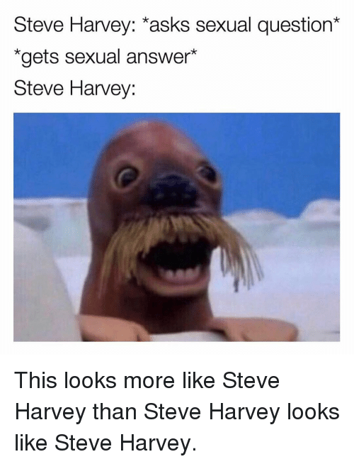 "Steve Harvey: Steve Harvey: *asks sexual question*  ""gets sexual answer*  Steve Harvey: This looks more like Steve Harvey than Steve Harvey looks like Steve Harvey."