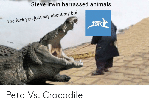 My Boi: Steve Irwin harrassed animals  The fuck you just say about my boi  PCTA Peta Vs. Crocadile
