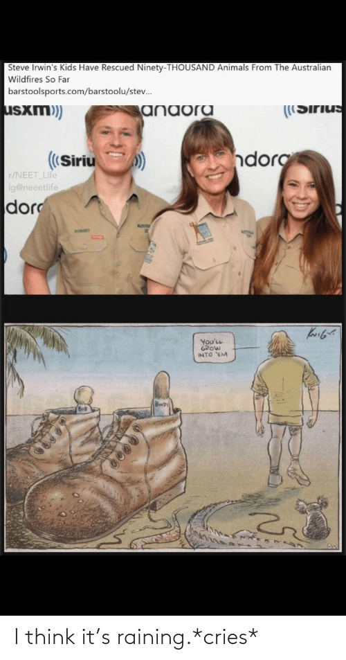 raining: Steve Irwin's Kids Have Rescued Ninety-THOUSAND Animals From The Australian  Wildfires So Far  barstoolsports.com/barstoolu/stev.  usxm)  ((Sirius  anaora  dorg  ((Siriu  r/NEET Life  ig@neeetlife  dor  AUST  RORORT  You'LL  GROW  INTO 'EM  BwD I think it's raining.*cries*