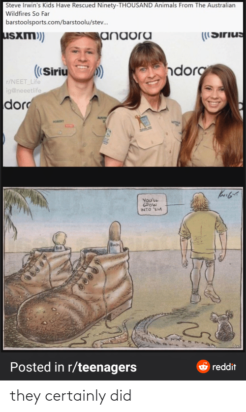 Sirius: Steve Irwin's Kids Have Rescued Ninety-THOUSAND Animals From The Australian  Wildfires So Far  barstoolsports.com/barstoolu/stev.  usxm)  anaora  ((Sirius  ndorg  ((Siriu  r/NEET_Life  ig@neeetlife  dor  AUST  ROBERT  ATIM  You'LL  GROW  INTO 'EM  BINDI  BOB  Posted in r/teenagers  e reddit they certainly did
