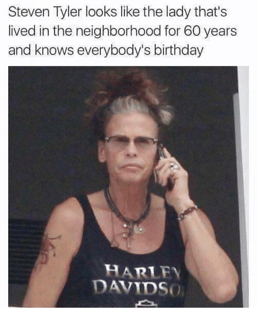 Steven Tyler: Steven Tyler looks like the lady that's  lived in the neighborhood for 60 years  and knows everybody's birthday  HARLEY  DAVIDSo