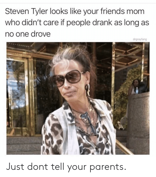 Steven Tyler: Steven Tyler looks like your friends mom  who didn't care if people drank as long as  no one drove  drgrayfang Just dont tell your parents.