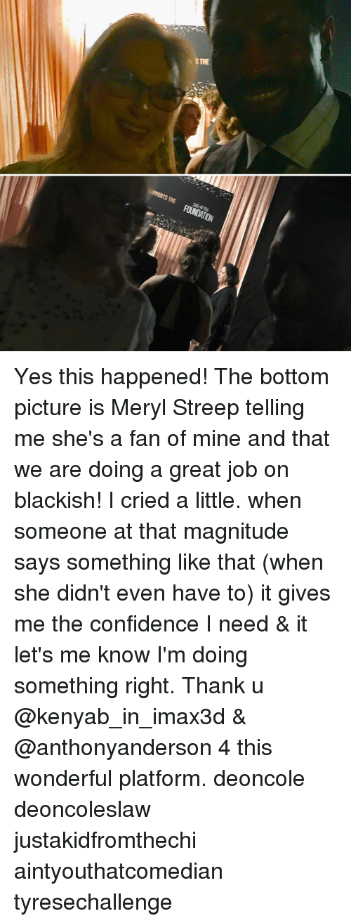 Memes, Meryl Streep, and 🤖: STHE  THE FUNDATION  SAGAFTRA Yes this happened! The bottom picture is Meryl Streep telling me she's a fan of mine and that we are doing a great job on blackish! I cried a little. when someone at that magnitude says something like that (when she didn't even have to) it gives me the confidence I need & it let's me know I'm doing something right. Thank u @kenyab_in_imax3d & @anthonyanderson 4 this wonderful platform. deoncole deoncoleslaw justakidfromthechi aintyouthatcomedian tyresechallenge