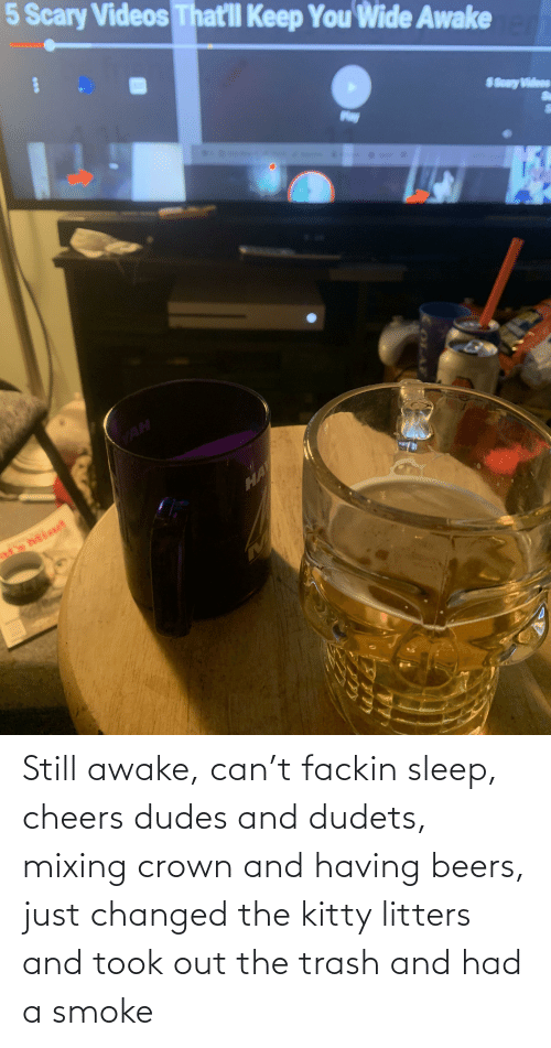 Trash, Sleep, and Cheers: Still awake, can't fackin sleep, cheers dudes and dudets, mixing crown and having beers, just changed the kitty litters and took out the trash and had a smoke