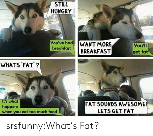 Eat Too Much: STILL  HUNGRY  You've had WANT MORE  breakfastBREAKFAST  You'll  get fat  WHATS FAT?  It's what  happens  when you eat too much food  FAT SOUNDS AWESOME!  LETS GET FAT srsfunny:What's Fat?