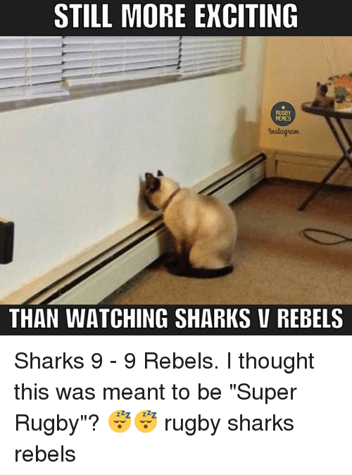 """Super Rugby: STILL MORE EXCITING  RUGBY  MEMES  1nstagram  THAN WATCHING SHARKS v REBELS Sharks 9 - 9 Rebels. I thought this was meant to be """"Super Rugby""""? 😴😴 rugby sharks rebels"""