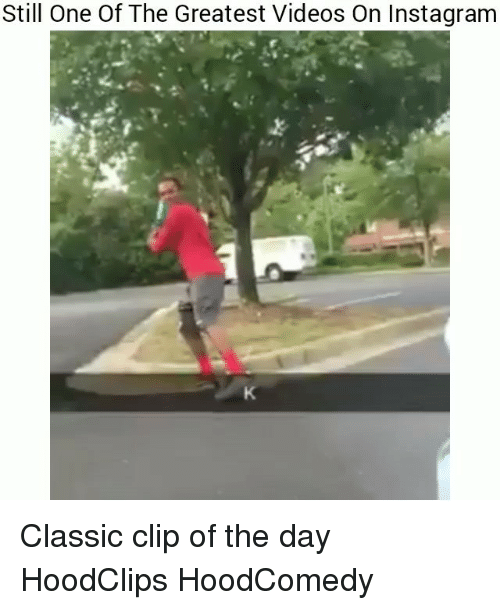 Funny, Instagram, and Videos: Still One Of The Greatest Videos On Instagram Classic clip of the day HoodClips HoodComedy