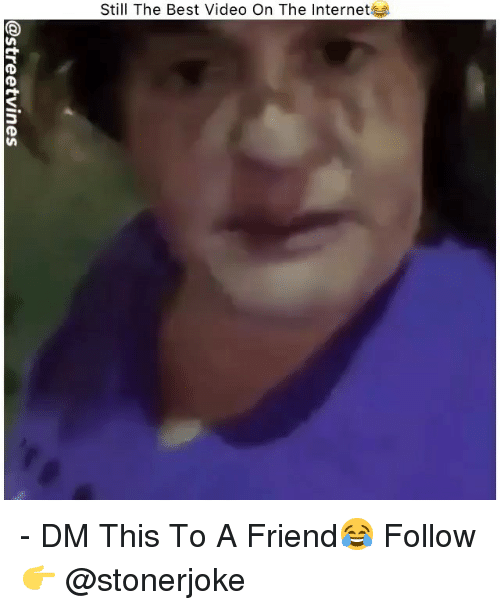 Internet, Memes, and Best: Still The Best Video On The Internet - DM This To A Friend😂 Follow 👉 @stonerjoke