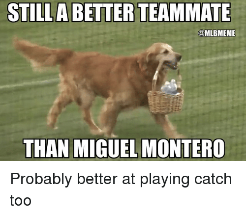 Miguels: STILLA BETTER TEAMMATE  @MLBMEME  THAN MIGUEL MONTERO Probably better at playing catch too