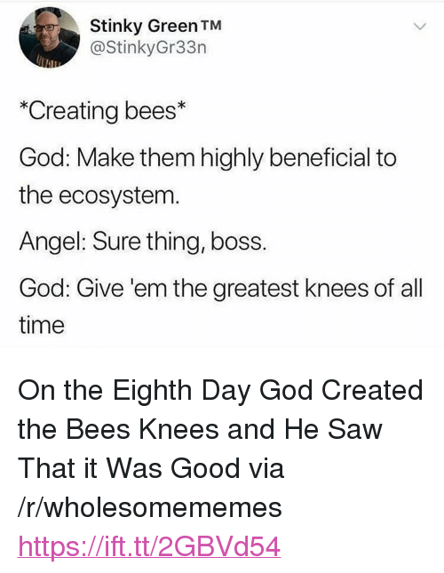 "bees knees: Stinky Green TM  @StinkyGr33n  *Creating bees*  God: Make them highly beneficial to  the ecosystem  Angel: Sure thing, boss.  God: Give 'em the greatest knees of all  time <p>On the Eighth Day God Created the Bees Knees and He Saw That it Was Good via /r/wholesomememes <a href=""https://ift.tt/2GBVd54"">https://ift.tt/2GBVd54</a></p>"