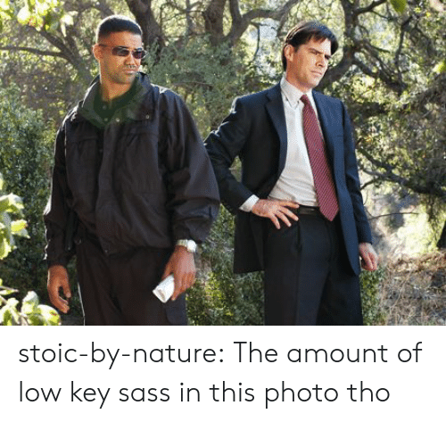 Stoic: stoic-by-nature:  The amount of low key sass in this photo tho