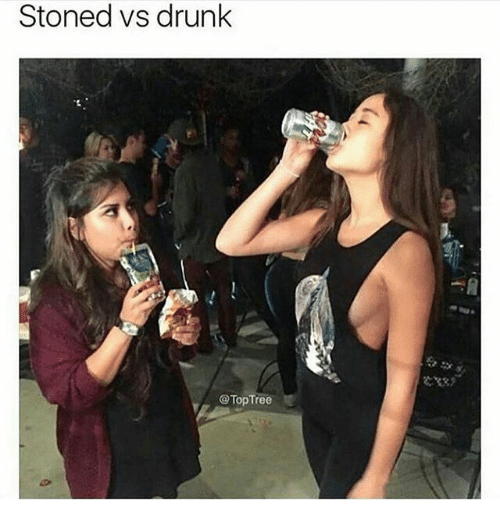 Drunk, Memes, and Tree: Stoned vs drunk  @Top Tree