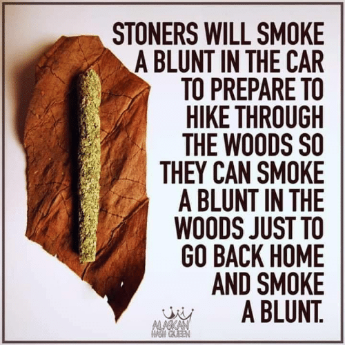 Stoners: STONERS WILL SMOKE  A BLUNT IN THE CAR  TO PREPARE TO  HIKE THROUGH  THE WOODS SO  THEY CAN SMOKE  A BLUNT IN THE  WOODS JUST TO  GO BACK HOME  AND SMOKE  A BLUNT.  ALASKAN  OM GAEEN