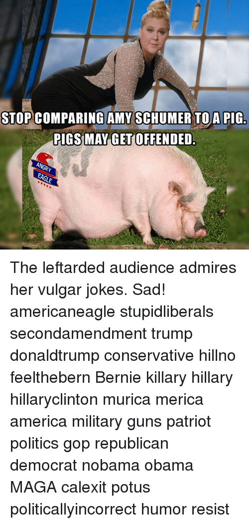 Memes, 🤖, and Gop: STOP COMPARING AMY SCHUMER TO A PIG  RIGS MAY GET OFFENDED. The leftarded audience admires her vulgar jokes. Sad! americaneagle stupidliberals secondamendment trump donaldtrump conservative hillno feelthebern Bernie killary hillary hillaryclinton murica merica america military guns patriot politics gop republican democrat nobama obama MAGA calexit potus politicallyincorrect humor resist