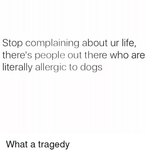 Stop Complaining: Stop complaining about ur life,  there's people out there who are  literally allergic to dogs What a tragedy