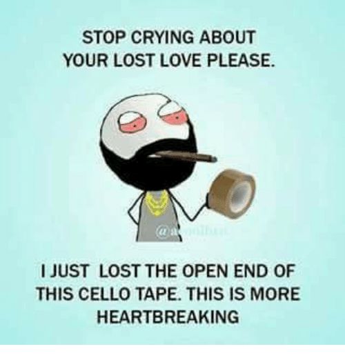 Stop Crying Memes 25+ Best Memes ...
