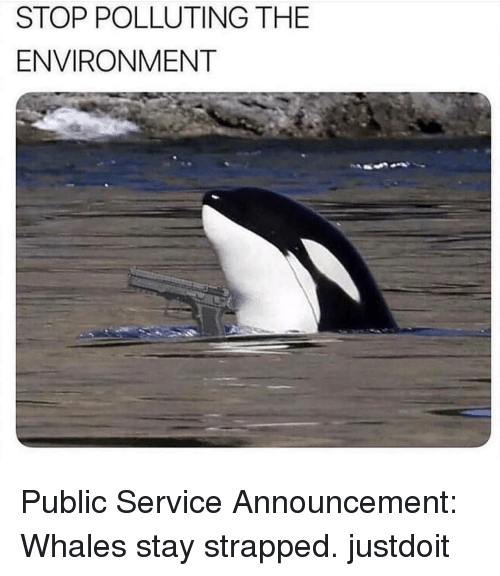 Memes, Announcement, and 🤖: STOP POLLUTING THE  ENVIRONMENT Public Service Announcement: Whales stay strapped. justdoit