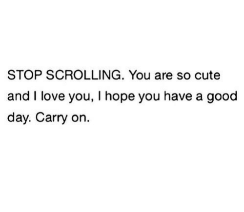And I Love You: STOP SCROLLING. You are so cute  and I love you, I hope you have a good  day. Carry on.