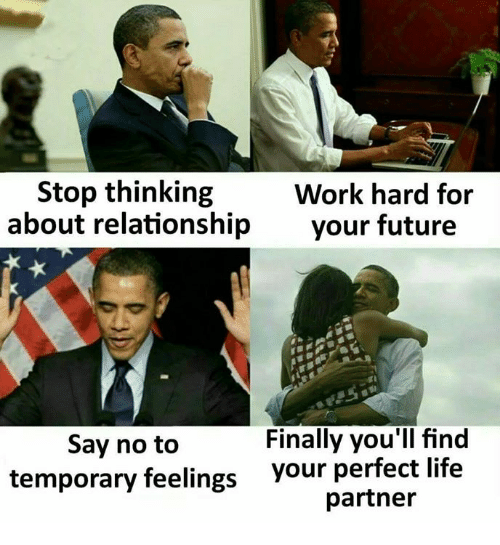 Future, Life, and Memes: Stop thinking  about relationship  Work hard for  your future  Finally you'll find  Say no to  temporary feelings  your perfect life  partner