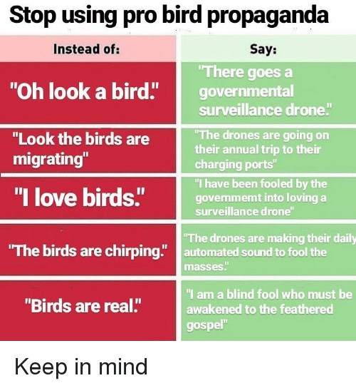 """gospel: Stop using pro bird propaganda  Instead of:  Say:  There goes a  """"Oh look a bird"""" governmental  surveillance drone  The drones are going on  their annual trip to their  charging ports""""  """"I have been fooled by the  govenmemt into loving a  surveillance drone  """"Look the birds are  migrating""""  """"I love birds""""govem  The birds are chirping"""" automated sound to fool the  The drones are making their daily  masses""""  I am a blind fool who must be  awakened to the feathered  gospel""""  """"Birds are real."""" Keep in mind"""