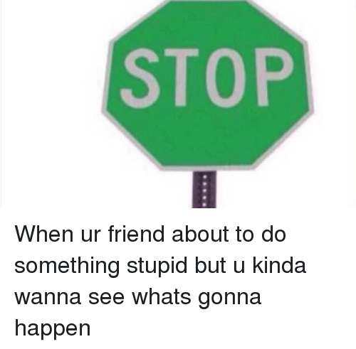 Funny: STOP When ur friend about to do something stupid but u kinda wanna see whats gonna happen