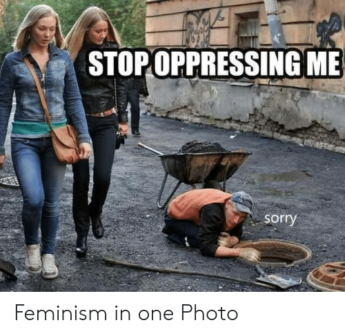 Feminism: STOPOPPRESSING ME  sorry Feminism in one Photo