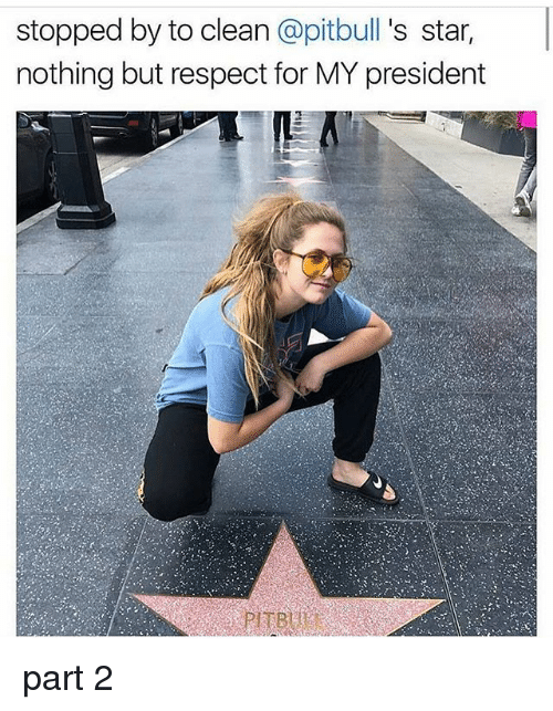 starly: stopped by to clean @pitbull 's star,  nothing but respect for MY president part 2