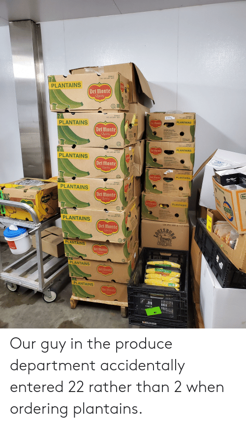 """msa: STORE AT  7.8°C-8.9°C (46°F-48'F)  PLANTAINS  Del Monte  Qyality  STORE AT  7.8 C-8.9°C(45""""F- 48 F)  STORE AT  7.8 C-8.9°C (46° F-48'F)  PLANTAINS  Del Monte  Orality  LANTANIS  PLANTAINS  SPECIES: Musa AAB  NET WT 50 Ib (22.7 Kg)  Del Monte  Qyality  OAUT  S  CAST  PRODUCT OF  GUATEMALA  STORE AT  7.3""""C-8.9 C (46F-48 F)  PLANTAINS  Del Monte  Quality  STORE AT  7.8.C-8.9°C(46 F-48°F)  SPECIES: Muaa AAS  NET WT 50 tb (227 Kg)  OPEN  ONCE  PLANTAINS  CONAC  Del Monte  Quality  PRODUCT OF  GUATEMALA  A  STORE AT  7.8C-8.0'C(45F6  EEPSAKE C  Real Ras!  PLANTAINS  Del Monte  Quality  SPECIES Mna AAB  NET WT S0 ID (22.7 Ka)  STORE AT  7.8 C-8.9°C(46'F-48*F)  PLANTAINS  t  REANIC  PRODUCT OF  GUATEMALA  Del monte  Qyality  STORE AT  7.8C-8.C (48F-48 F  NIC  Del Monte  Qulty  STORE AT  12.3 C-155' (56-60'F)  Del Monte  PLANTAINS  SPECIES Msa AAB  NET WT 50 b (227 Kg)  nte  STORE AT  7.8 C-8.9°C(46'F-48°F  PRODUCT OF  GUATEMALA  PLANTAINS  LCM APPLE CDER 09 15 21 0557 46  Del Monte  Quality  VOISRUAS  winhot  WATURE S EATS  CIDER MILL  PLANTAINS  Delmonte  Quality  -380  PLANTAINS  இ  Del Monte  Oyality  COB CORN  Iteriely Sreet  8 COBS  PLANTAINS  Del Monte  Oyality  Bicolor Corn  unA  87 Our guy in the produce department accidentally entered 22 rather than 2 when ordering plantains."""