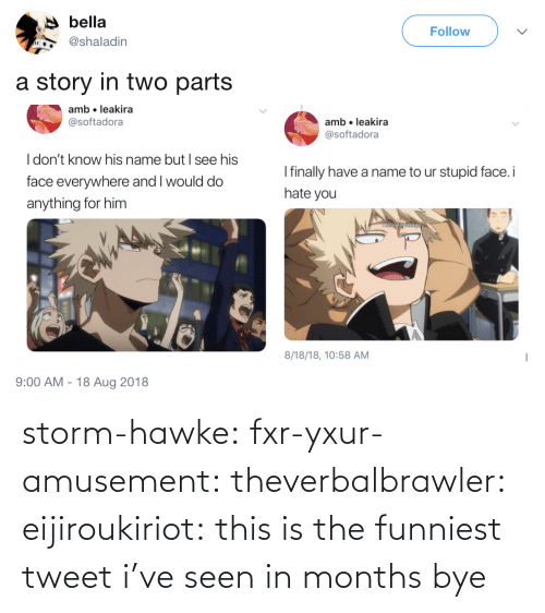 bye: storm-hawke:  fxr-yxur-amusement:  theverbalbrawler:  eijiroukiriot: this is the funniest tweet i've seen in months bye