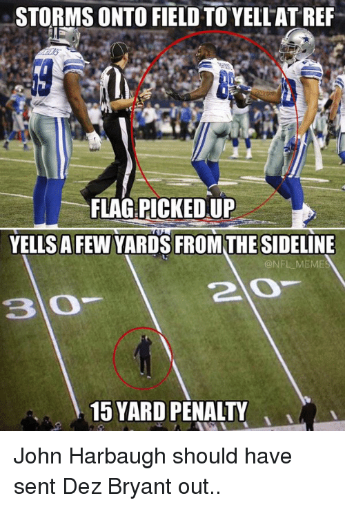 Dez Bryant: STORMS ONTO FIELD TO YELL ATREF  FLAG PICKED UP  YELLS A FEW YARDS FROM THE SIDELINE  @NFL MEME  2 O  15 YARD PENALTY John Harbaugh should have sent Dez Bryant out..