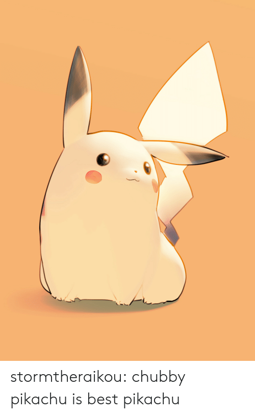 Pikachu, Target, and Tumblr: stormtheraikou: chubby pikachu is best pikachu